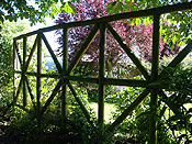 Trellis from behind in summer